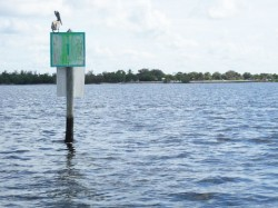 Marker 1 in the channel leading from the Ponce de Leon Park ramp out into Charlotte Harbor